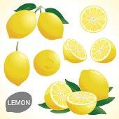Set of lemon in various styles vector format