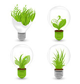 Set of Light Bulbs with Plant and Leaves Growing