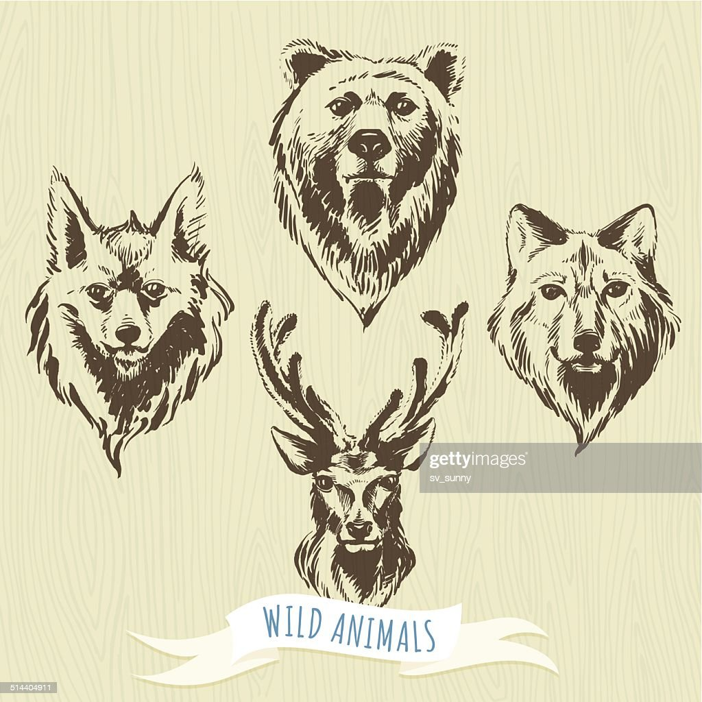 Set of marker hand-drawn forest animals: wolf, bear, deer, fox