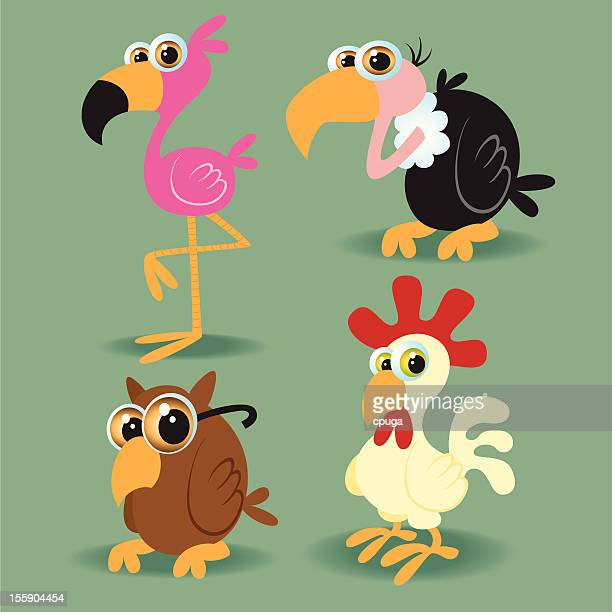 set of mixed birds - flamingo stock illustrations, clip art, cartoons, & icons