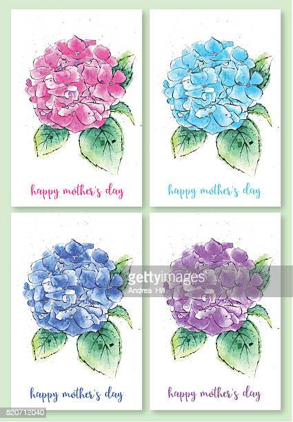 set of mother's day illustrations, watercolor painting of hydrangea flowers - mothers day text art stock illustrations