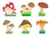 Set of mushrooms in in grass. Different mushrooms. Vector illustration