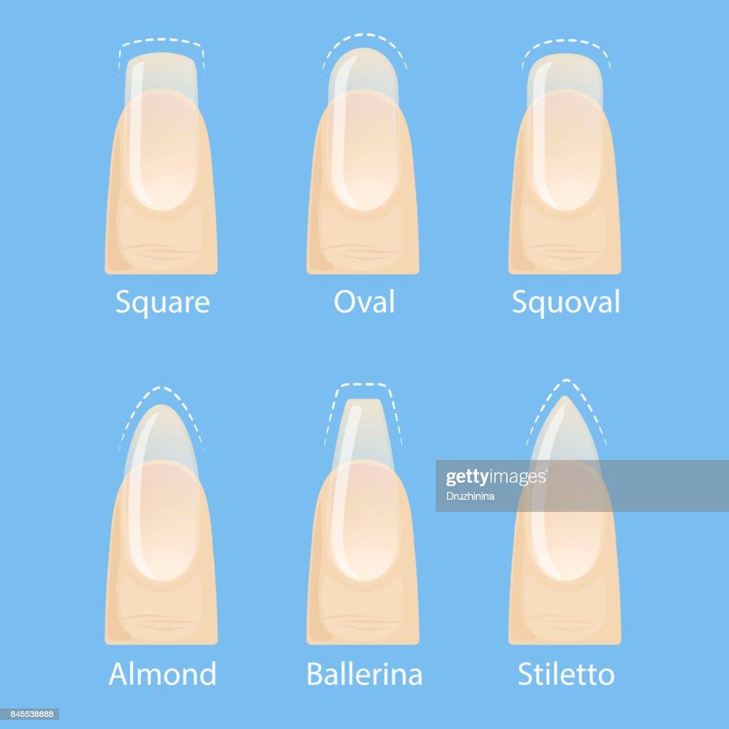 Set of nails shapes