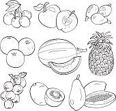 Set of nine hand-drawn fruit illustrations in black