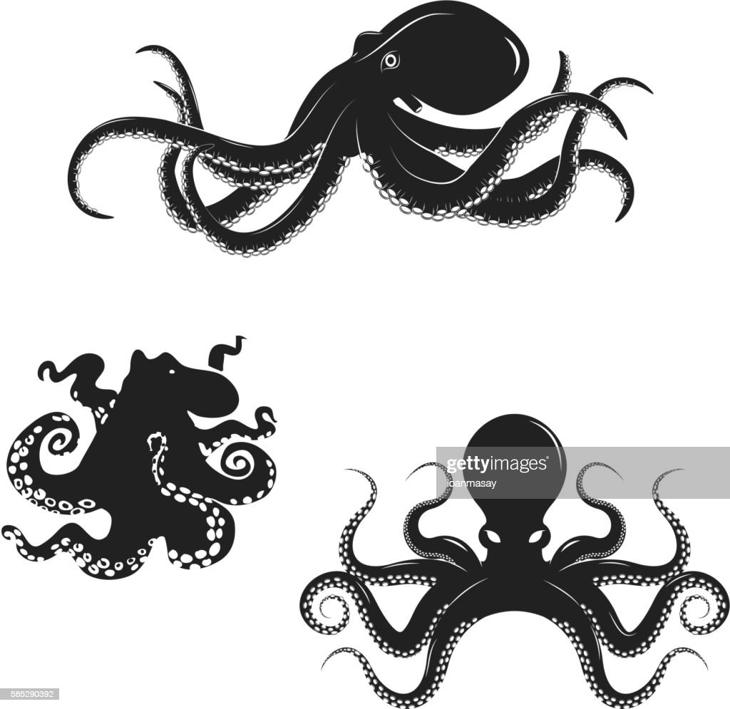 Set of octopus silhouettes isolated on white background. Seafood