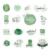 Set of organic food hand drawn watercolor badges and elements