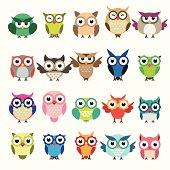 Set of owls isolated on white background