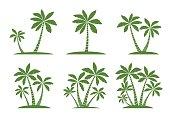 Set of Palm Trees. Vector illustration on white background