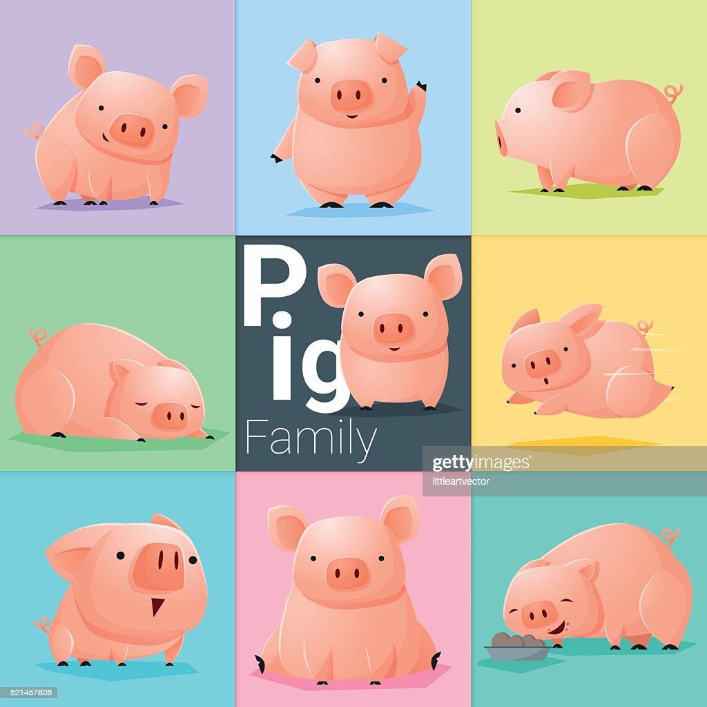 Set of Pig family