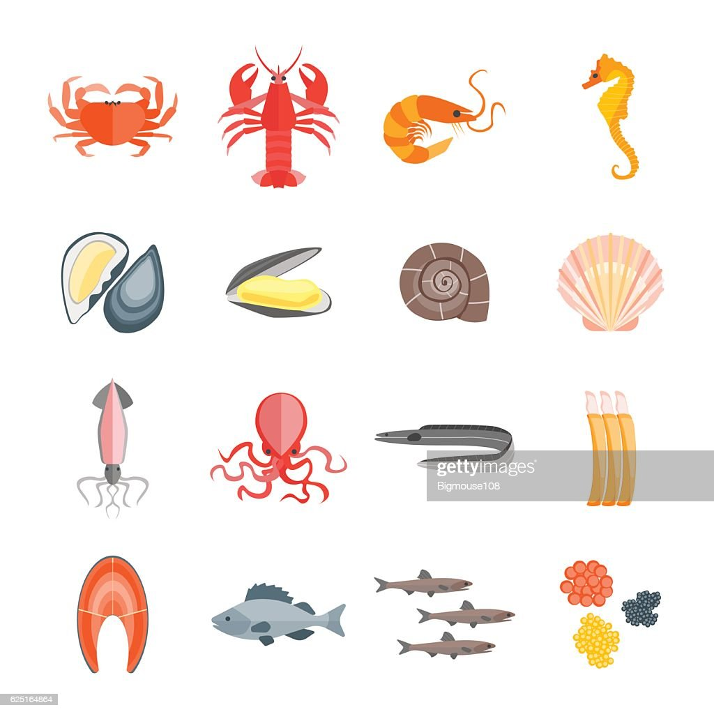 Set of Seafood. Vector