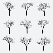 Set of Silhouette of tree
