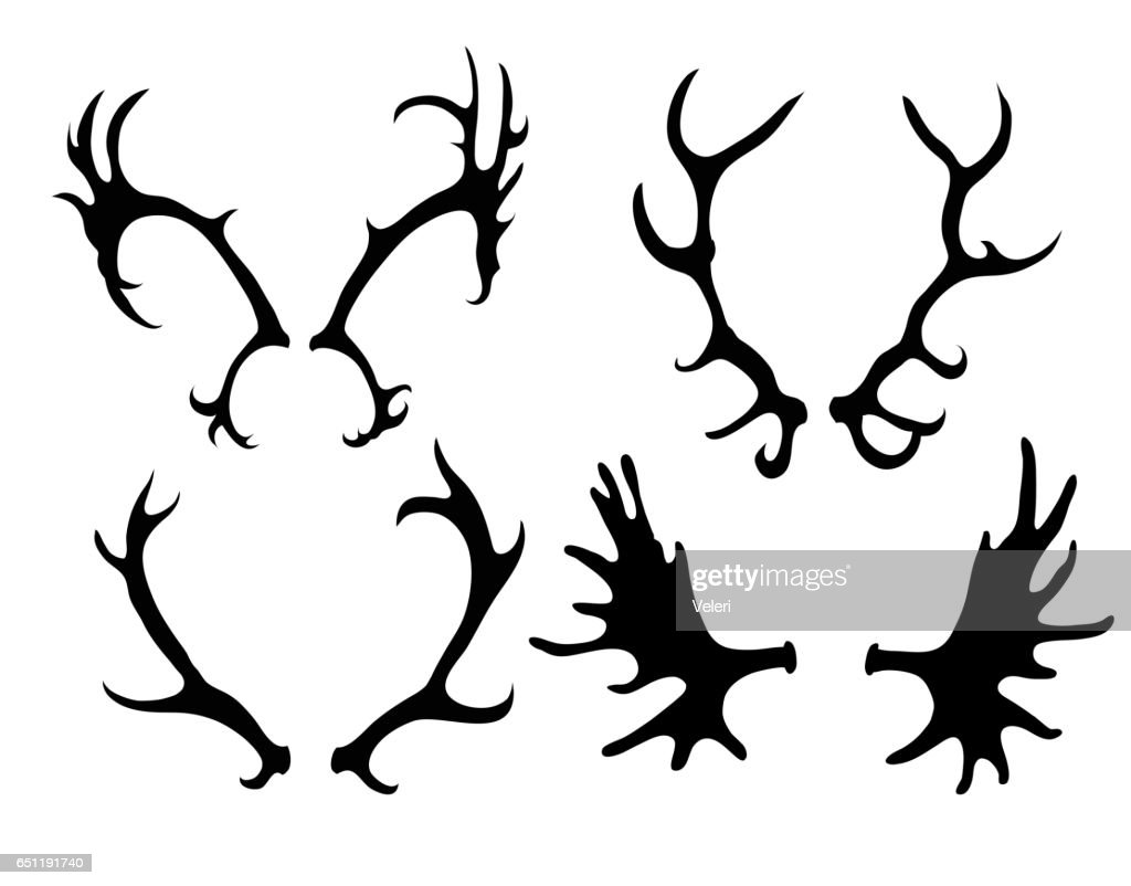 Set of silhouettes of deer and elk horns