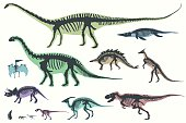 Set of silhouettes of skeletons of dinosaurs and fossils.