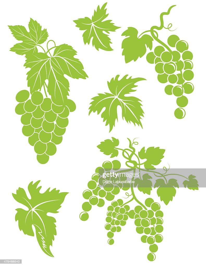 Set Of Simple Grapes Bunches And Leaves