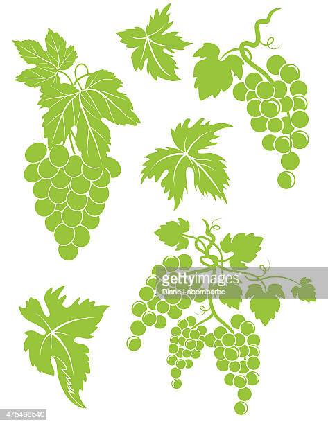 set of simple grapes bunches and leaves - grape stock illustrations, clip art, cartoons, & icons