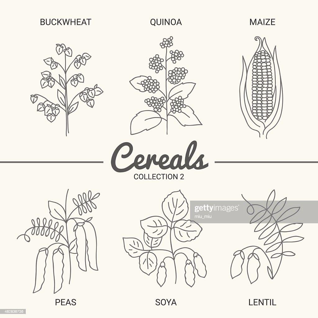 Set of six cereals