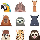 Set of south america animals flat icons