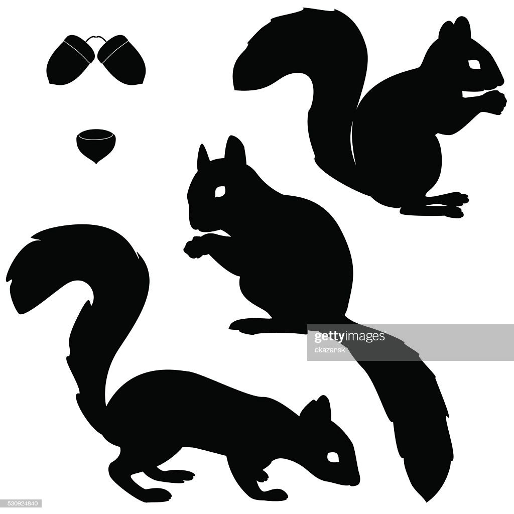 Set of squirrels silhouettes