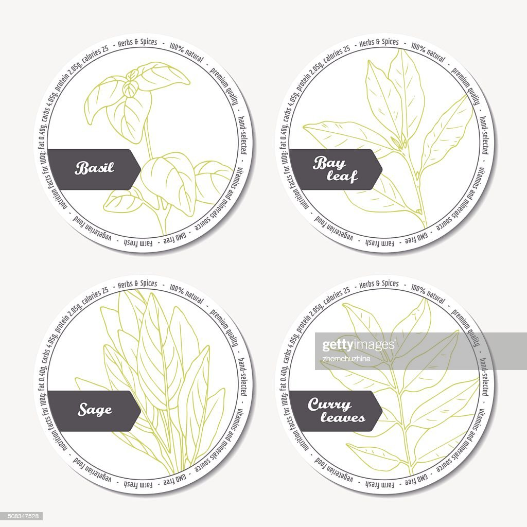 Set of stickers for package design with sage, bay leaf