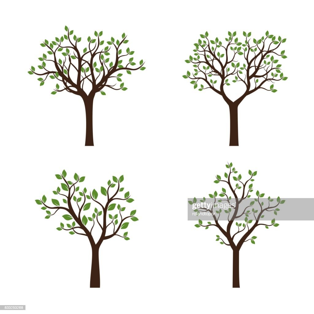 Set of summer Trees with Leaves