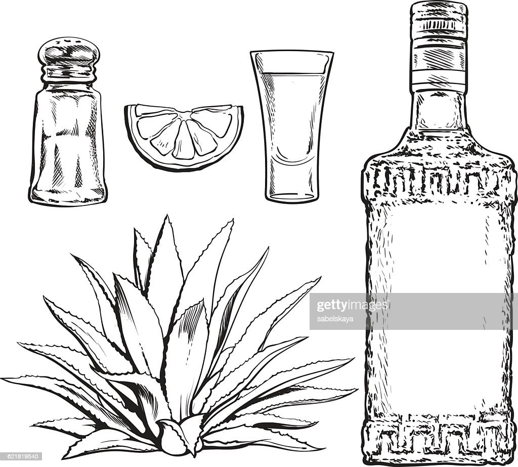 Set of tequila bottle, shot, salt mill, agave and lime