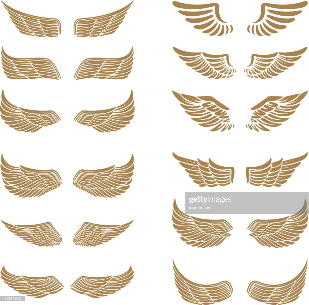 Set of the emblems with wings in gold style isolated
