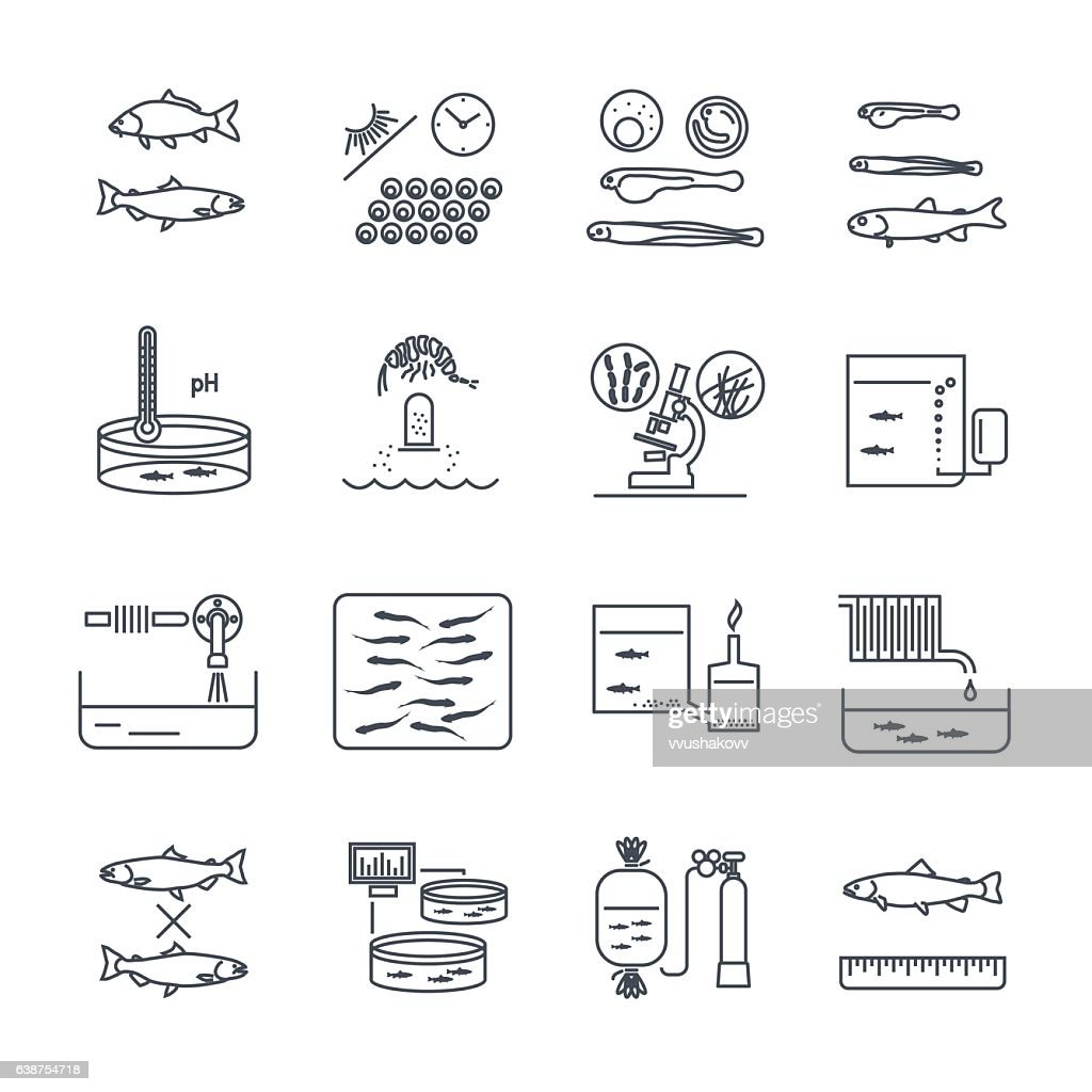 set of thin line icons aquaculture production process