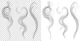 Set of translucent gray smoke. Transparency only in vector forma