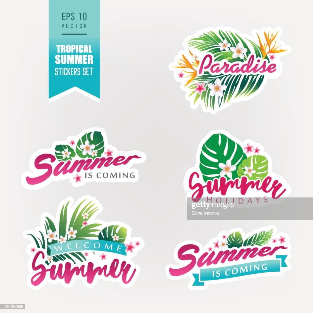 Set of tropical summer stickers