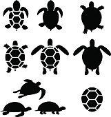 Set of turtle and tortoise silhouette