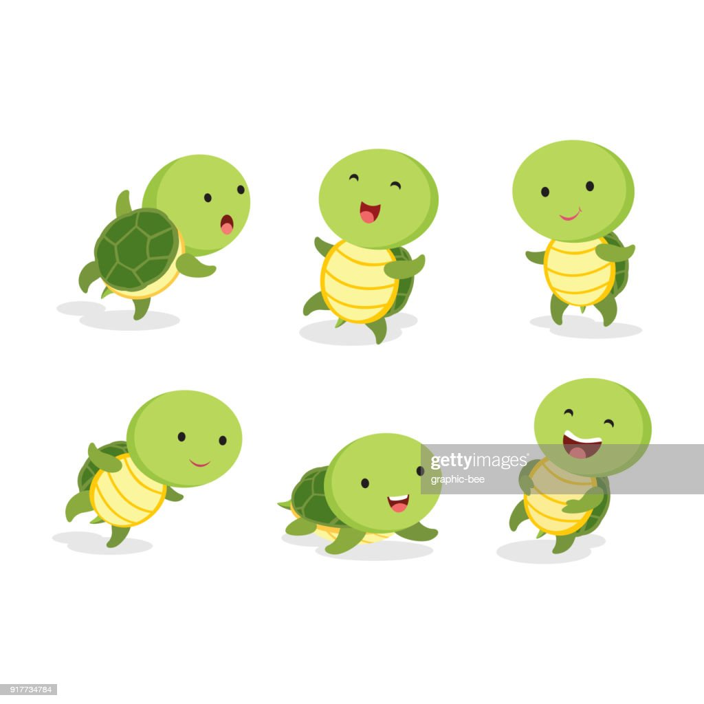 Set of turtle in different pose