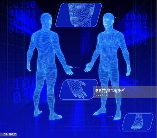 ilustrações, clipart, desenhos animados e ícones de conjunto de dois 3d pessoas. - corpo humano