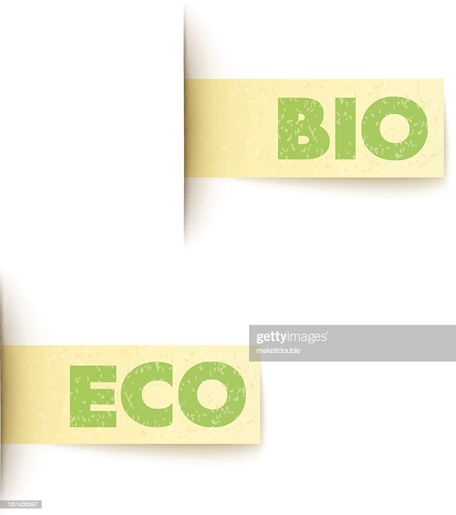 set of two paper labels eco design with text : Vectorkunst