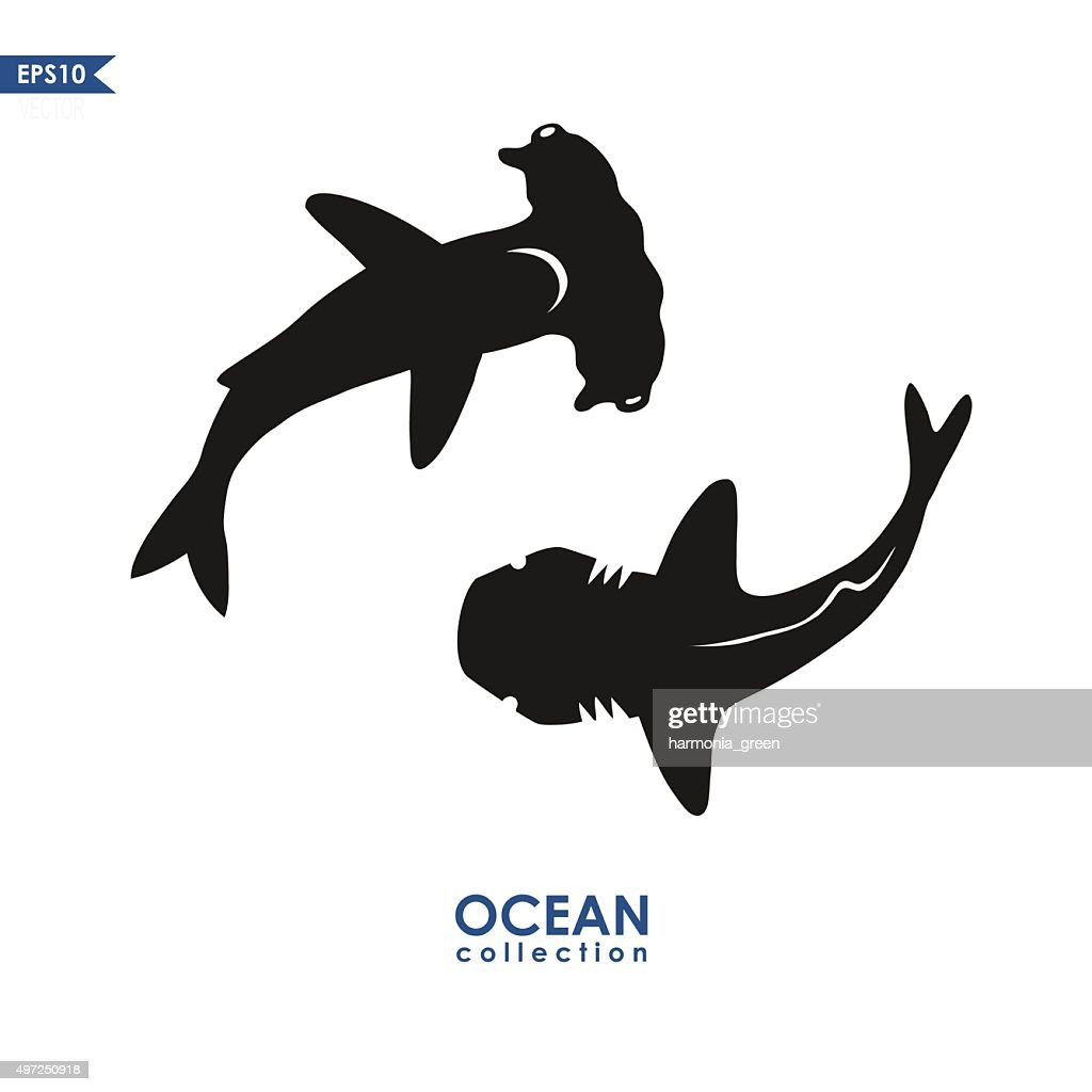 set of two sharks