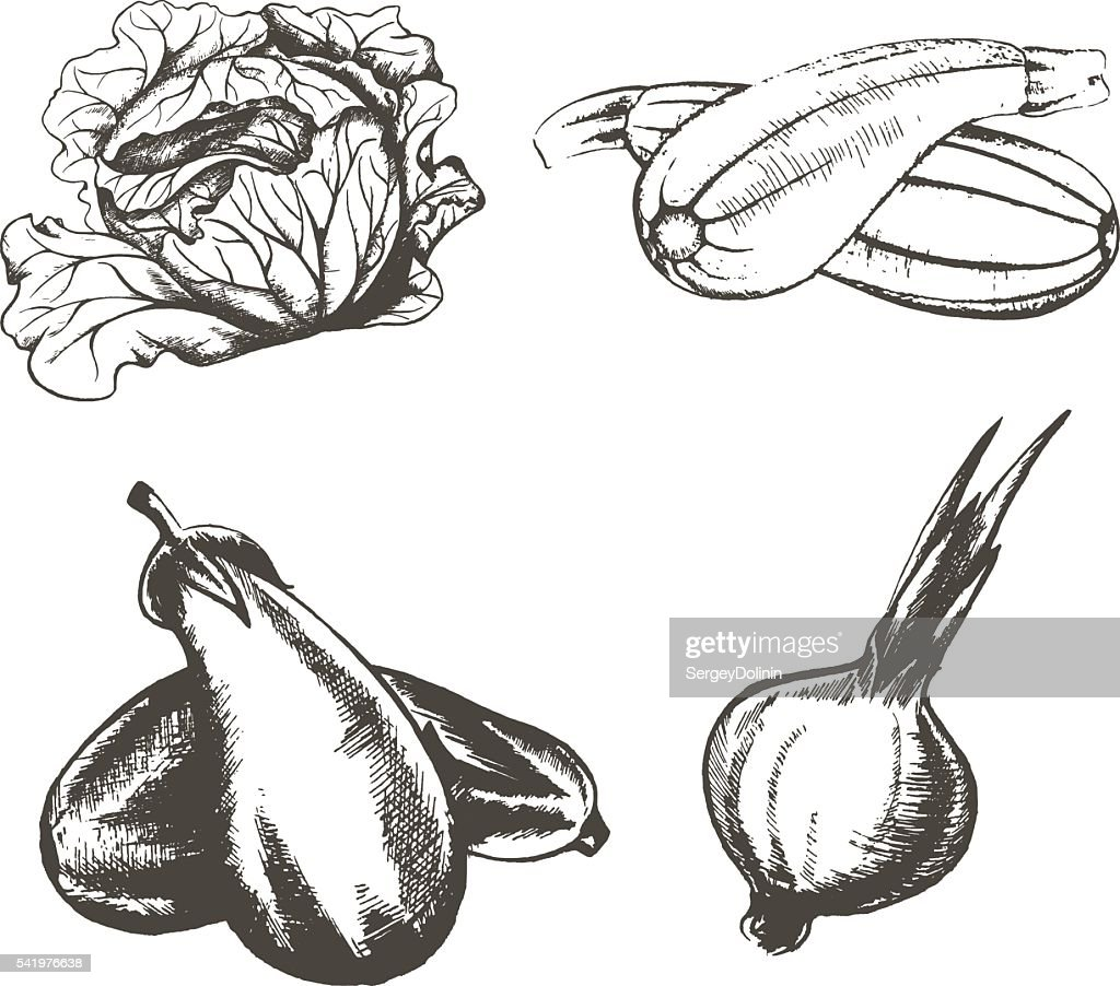 set of v of vegetables on a white background