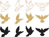 Set of Varied Doves Flying