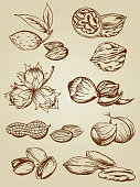 set of various nuts