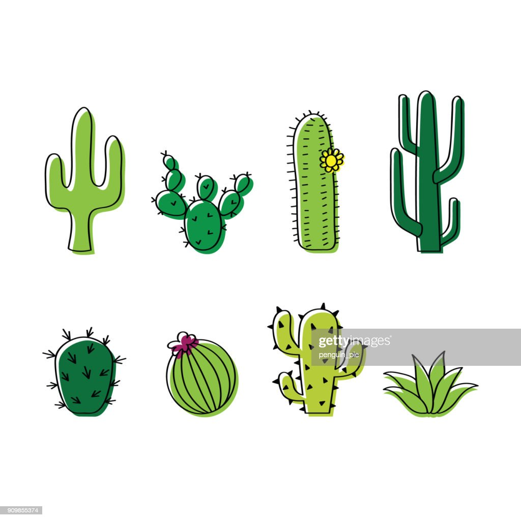 Set of vector cacti, cactus doodle illustration