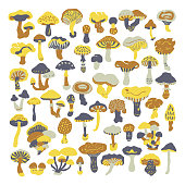 Set of vector doodles mushrooms.