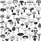 Set of vector hand-drawn, doodles mushrooms.
