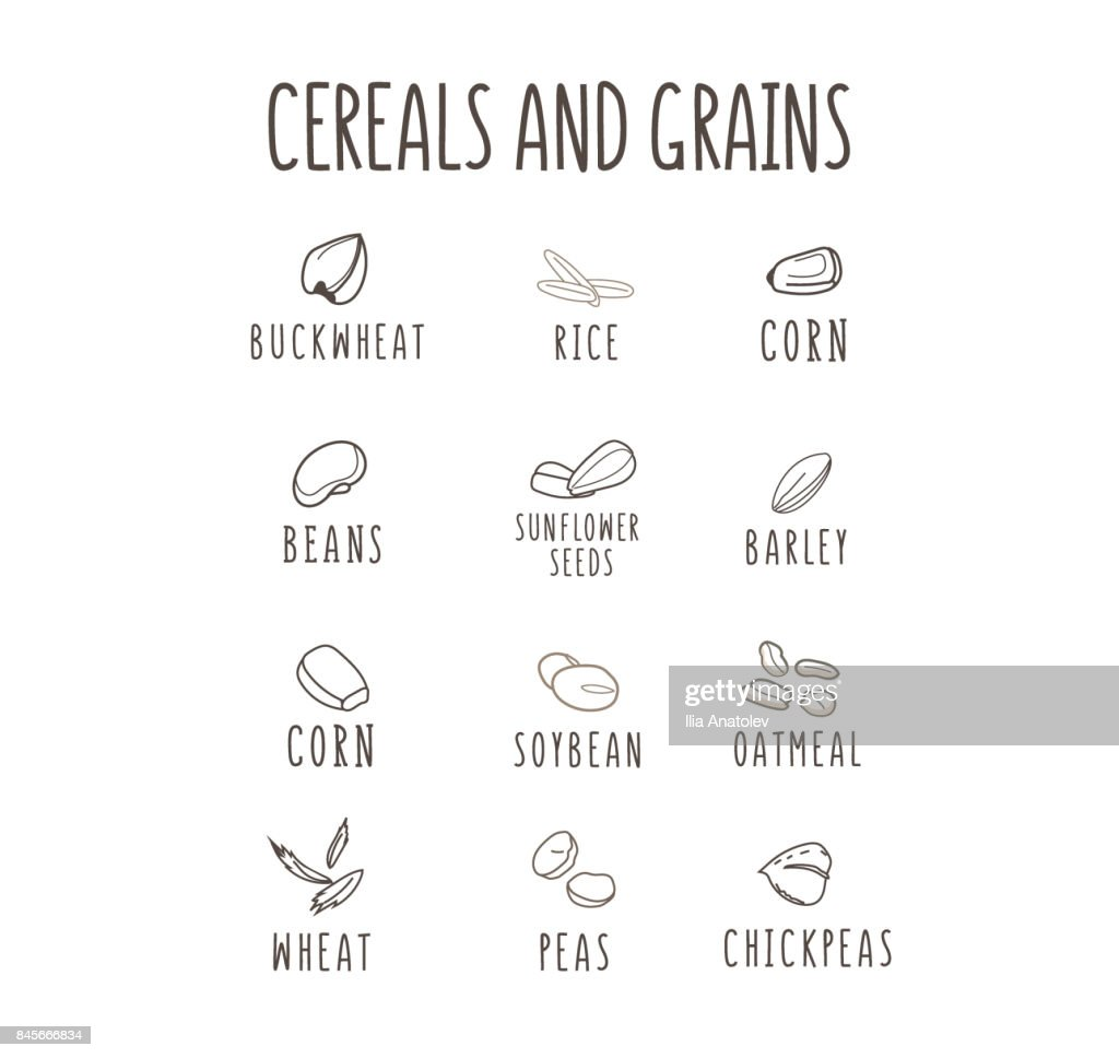 Set of vector hand-drown logo elements for healthy food, raw food, vegetarian. Grain and Cereals. Beans, corn, oatmeal, rice, soybean, peas, sunflower seeds, buckweat
