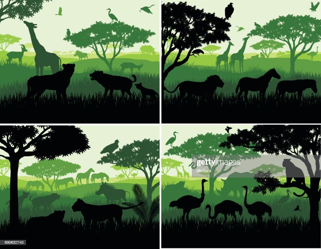 set of Vector illustrations of african savannah safari landscape with wildlife animals silhouettes in sunset design templates