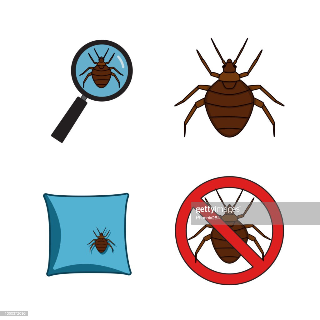 Set of vector images on the theme of bed parasites.
