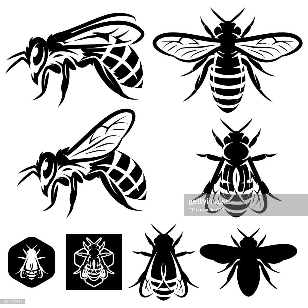 set of vector monochrome templates with bees of different kinds.