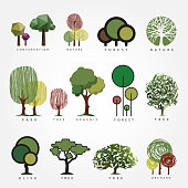 Set of vector tree illustration.