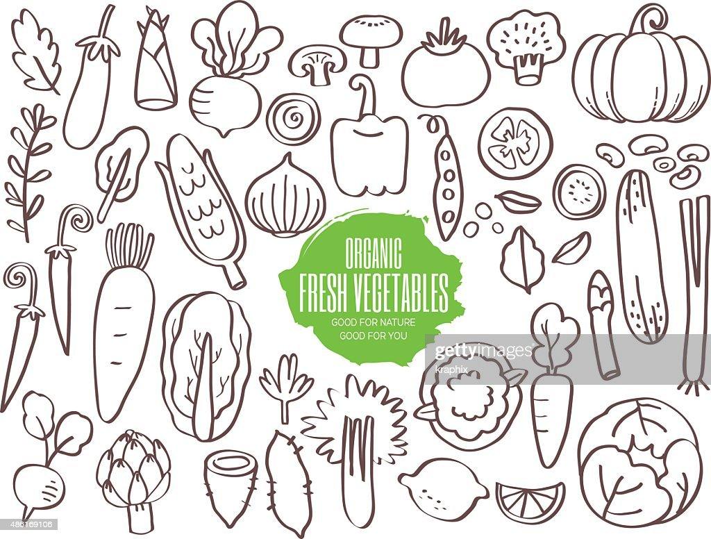Set of vegetables doodles