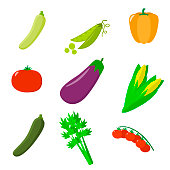 Set of vegetables. Organic vegetarian healthy food isolated on white background. Vector.
