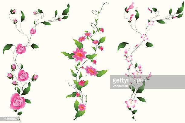 set of vine.. - rose flower stock illustrations, clip art, cartoons, & icons