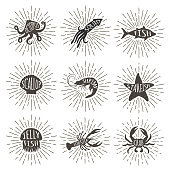 Set of vintage hand drawn sea animals with sun rays.