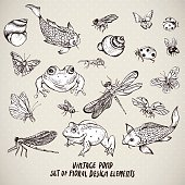 Set of vintage pond water animals vector elements
